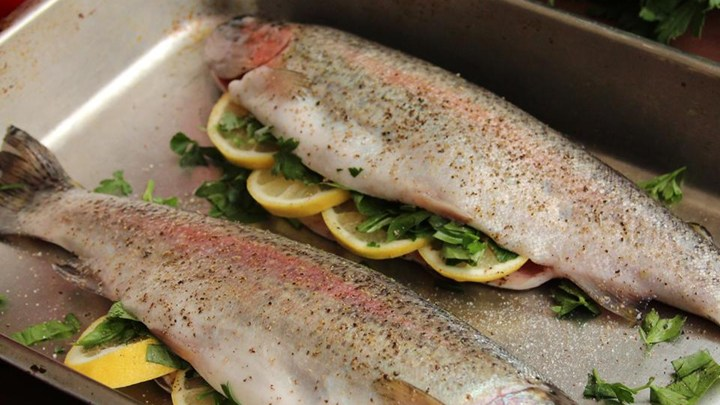 Fresh rainbow trout for Triple tail fish taste